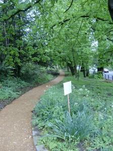 The Path April 2005