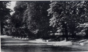 Grove Lodge Estate in 1945 - Muswell Hill